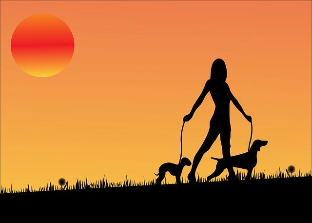 Adelgazar caminando con perro